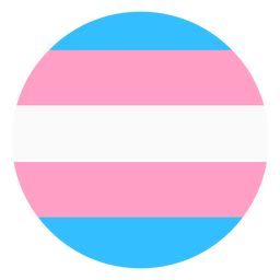 Transgender circle stripe flat