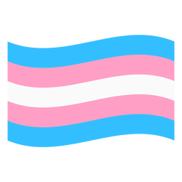 Transgender flag stripe flat