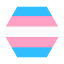 Transgender hexagon stripe flat
