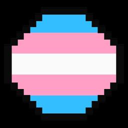 Transgénero octágono raya pixel plana