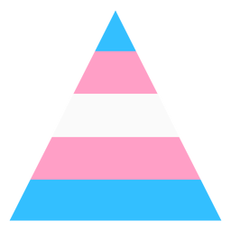 Transgender triangle stripe flat