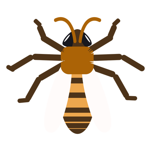 Wasp bee stripe wing rounded flat Transparent PNG