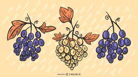 Conjunto de ilustração de uvas coloridas