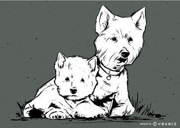 Cães brancos terrier