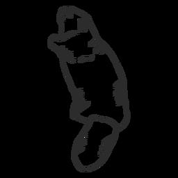 Doodle cola de castor