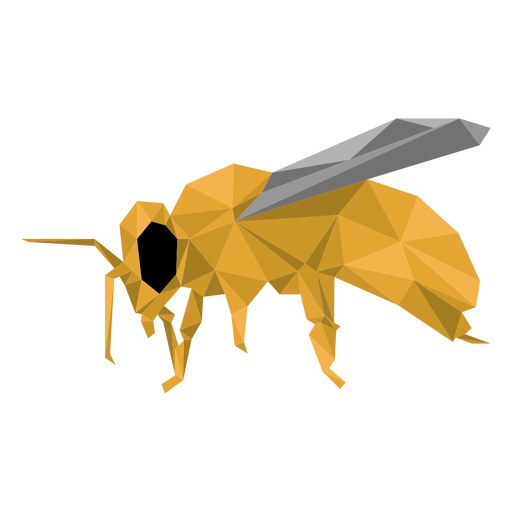 Bee leg wasp wing low poly Transparent PNG