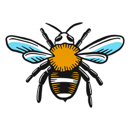 Bienenbeinwespen-Flügelskizze