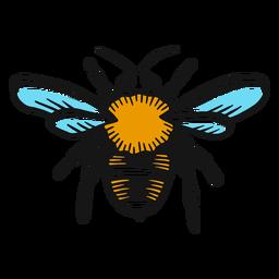 Dibujo de ala de avispa de pierna de abeja