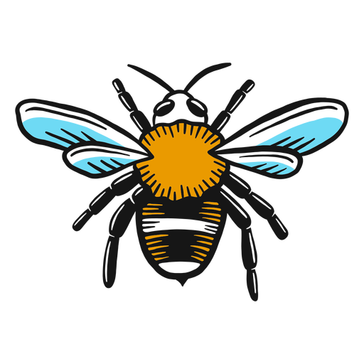 Bosquejo de ala de avispa abeja Transparent PNG