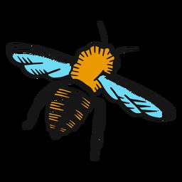 Esboço de asa de perna de vespa de abelha