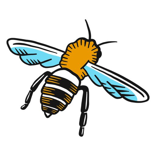 Bee wasp leg wing sketch Transparent PNG