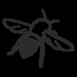 Doodle de listra de asa de abelha de abelha
