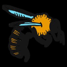 Bosquejo de avispa de pata de ala de abeja