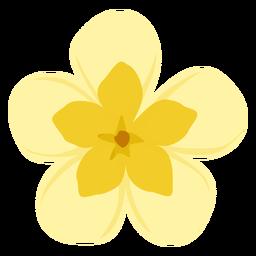 Pétalo de la flor del brote plano