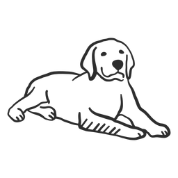 Perro cachorro oreja acostado doodle