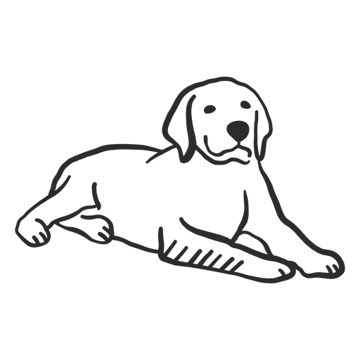 Orelha de cachorro cachorro deitado doodle Transparent PNG