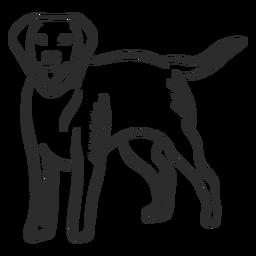 Doodle de orelha de língua de cachorro filhote de cachorro