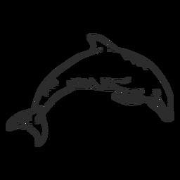 Rabo de golfinho nadando rabiscar doodle