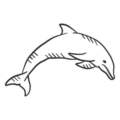 Dolphin flipper swimming tail doodle Transparent PNG