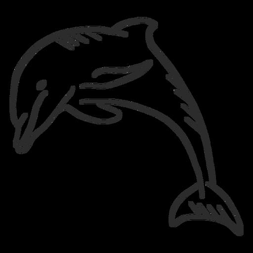 Cola de delfín aleta natación doodle Transparent PNG
