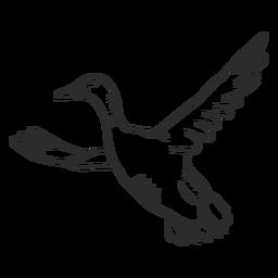 Pato, drake, pato selvagem, asa bico, voando, doodle