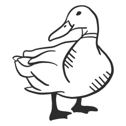 Duck Drake Wildente Flügel Schnabel Gekritzel