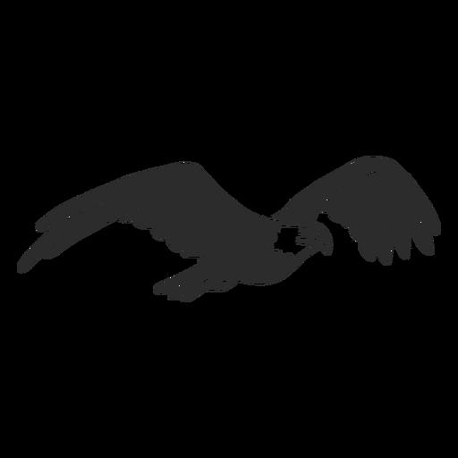 Eagle flying beak wing talon doodle Transparent PNG