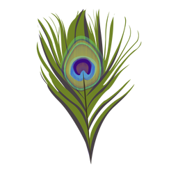 Feather peacock pattern illustration