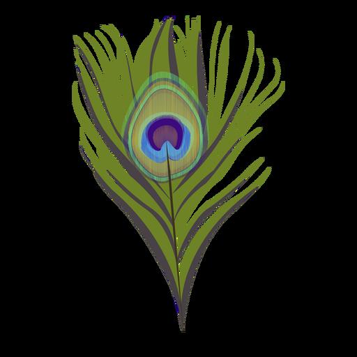 Ilustración de patrón de pavo real de plumas Transparent PNG