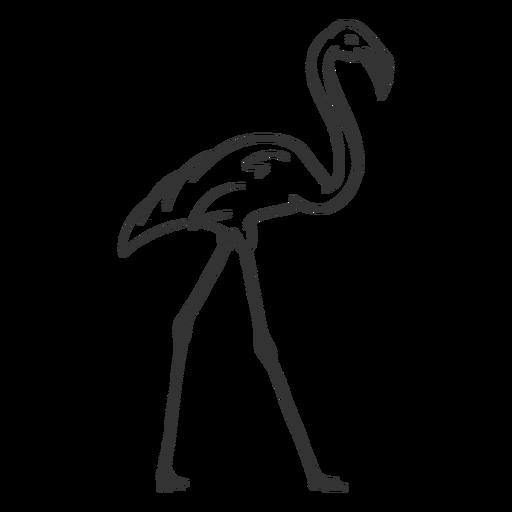 Doodle de la pierna del cuello del pico del flamenco Transparent PNG