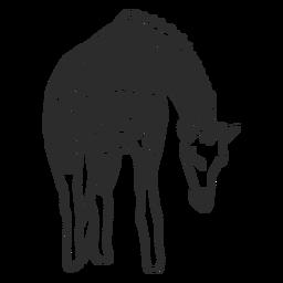 Giraffe vor Ort Hals Ossicones Gekritzel