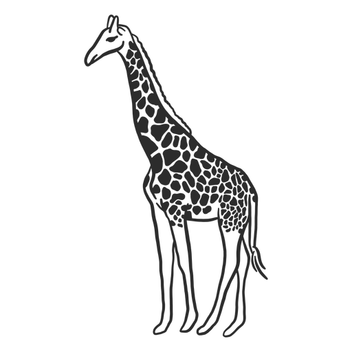 Giraffe spot neck ossicones tail doodle