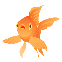 Goldfish flipper gills tail illustration