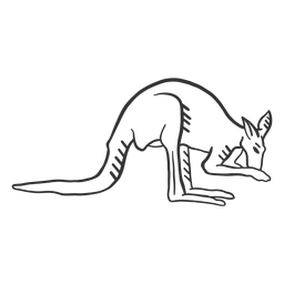Kangaroo tail ear leg doodle