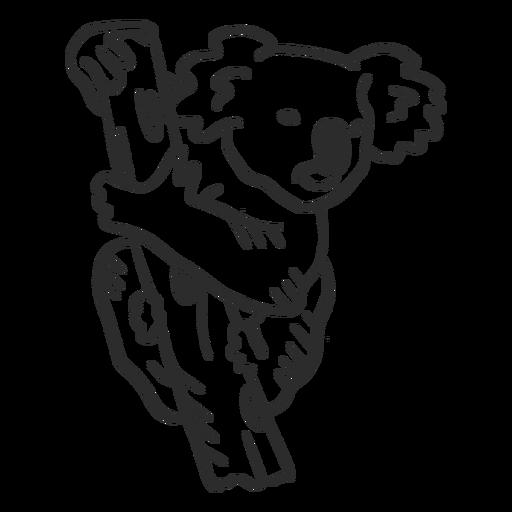 Doodle de orelha de ramo de nariz de coala Transparent PNG