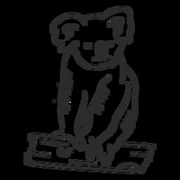 Doodle de ramo de orelha de nariz de coala