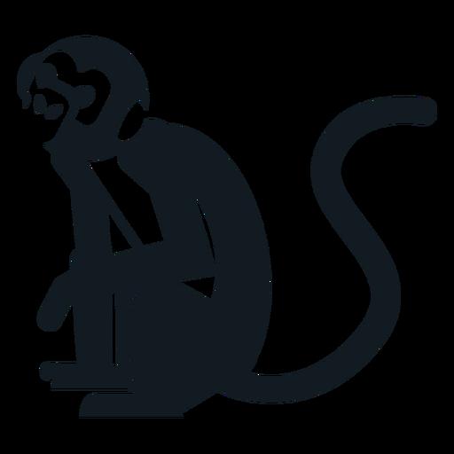 Mono sentado pierna cola bozal silueta detallada Transparent PNG