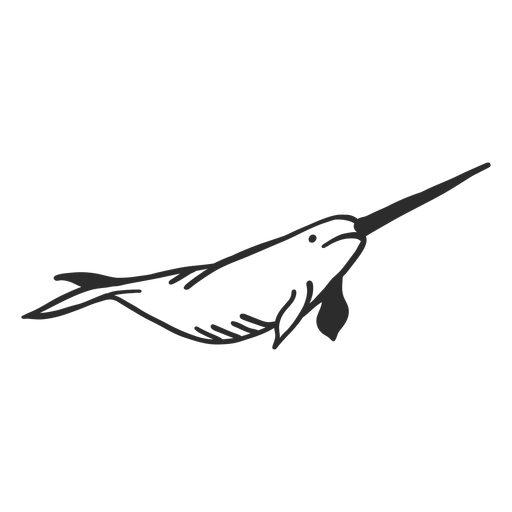 Narwhal tusk flipper tail doodle Transparent PNG