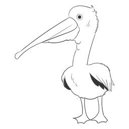 Golpe de asa de pena de bico pelicano