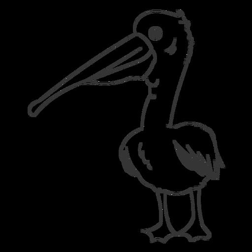 Trazo de ala de pluma de pico de pelícano Transparent PNG