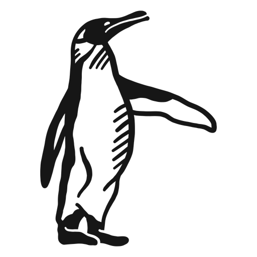 Penguin wing beak leg doodle Transparent PNG