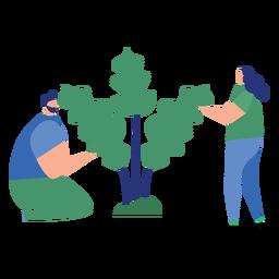 Planta homem mulher árvore folha plana