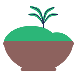Topfdünger Blattpflanze Baum flach