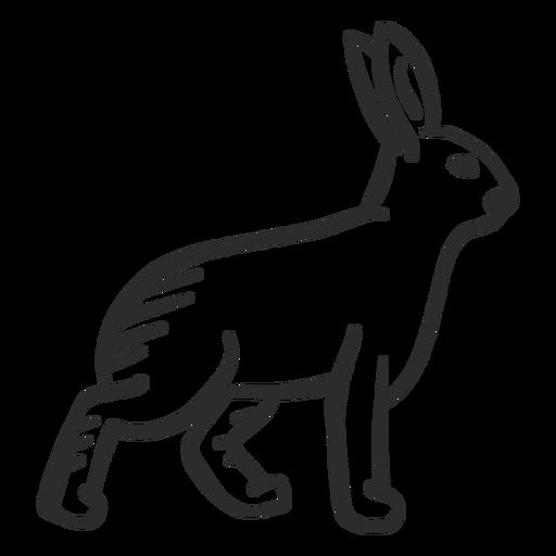 Rabbit bunny ear muzzle doodle Transparent PNG