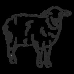 Doodle de orelha de lã de ovelha ovelha cordeiro