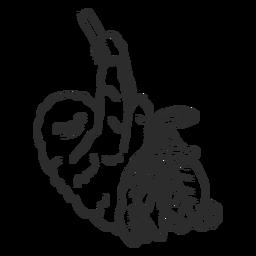 Doodle de folha de garra de árvore de ramo de preguiça