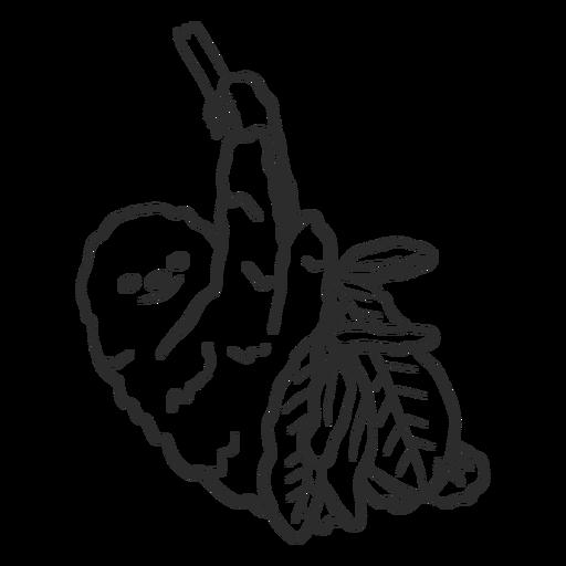 Perezoso rama árbol garra hoja doodle Transparent PNG