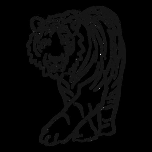 Tiger muzzle ear stripe doodle Transparent PNG