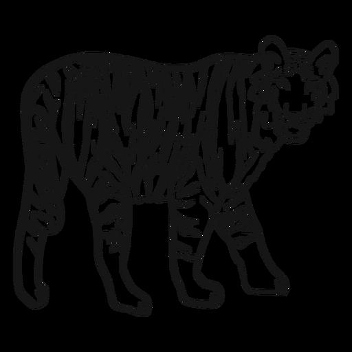 Tigre hocico raya oreja cola doodle Transparent PNG