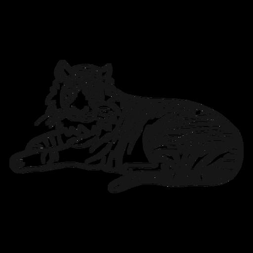 Lügengekritzel des Tigermündungsstreifen-Ohrendstücks Transparent PNG